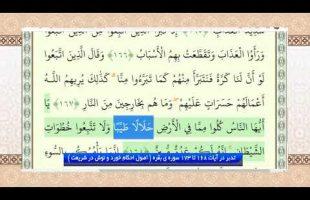 تدبر در قرآن : تدبر در آیات 168 تا 173 سوره ی بقره ( اصول احکام خورد و نوش در شریعت )