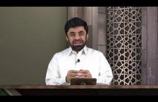 در رکاب قرآن : قتل موجودات زنده