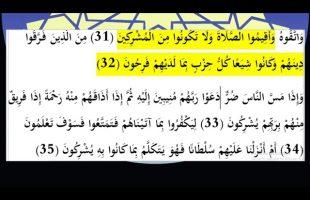 برهان قاطع : این کلیپ ثابت میکند که شیعه مسلمان نیست