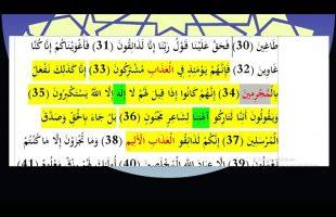 برهان قاطع : قرآن می گوید : کسی که از امام رضا حاجت بخواهد مجرم است !